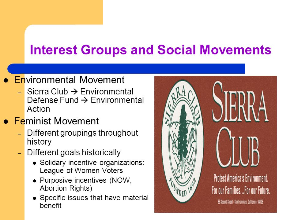 Interest Groups and Social Movements Environmental Movement – Sierra Club Environmental Defense Fund Environmental Action Feminist Movement – Differen