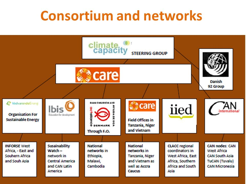 Consortium and networks
