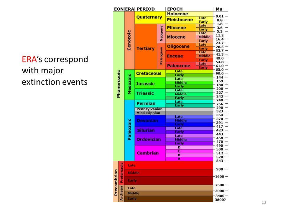 ERAs correspond with major extinction events 13