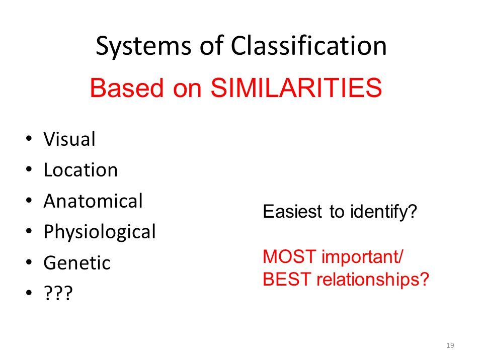 Systems of Classification Visual Location Anatomical Physiological Genetic ??? Based on SIMILARITIES Easiest to identify? MOST important/ BEST relatio