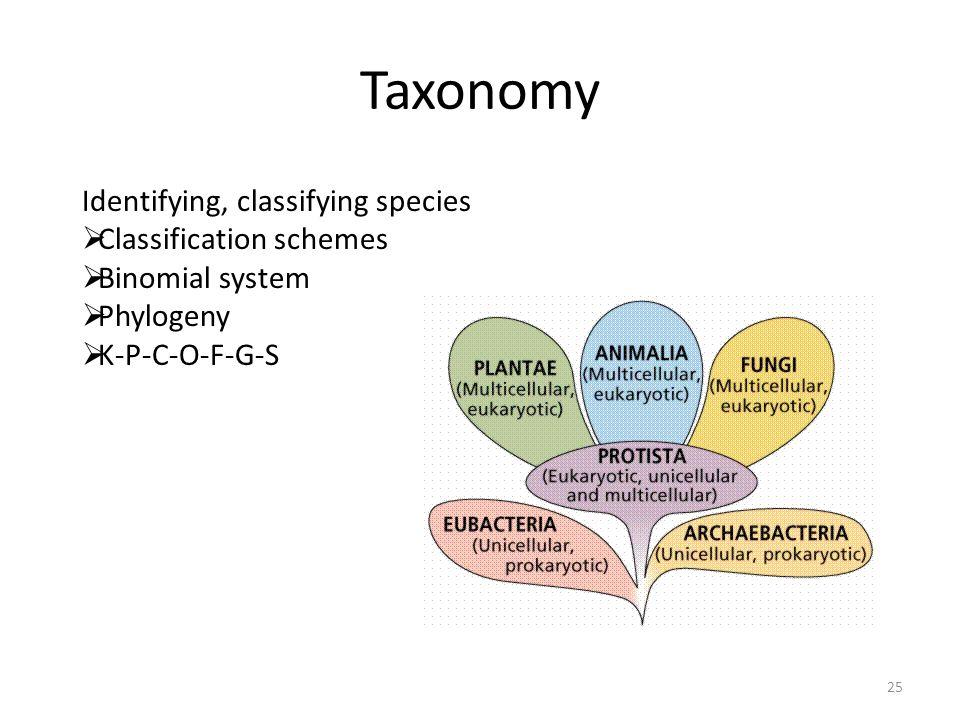 Taxonomy Identifying, classifying species Classification schemes Binomial system Phylogeny K-P-C-O-F-G-S 25