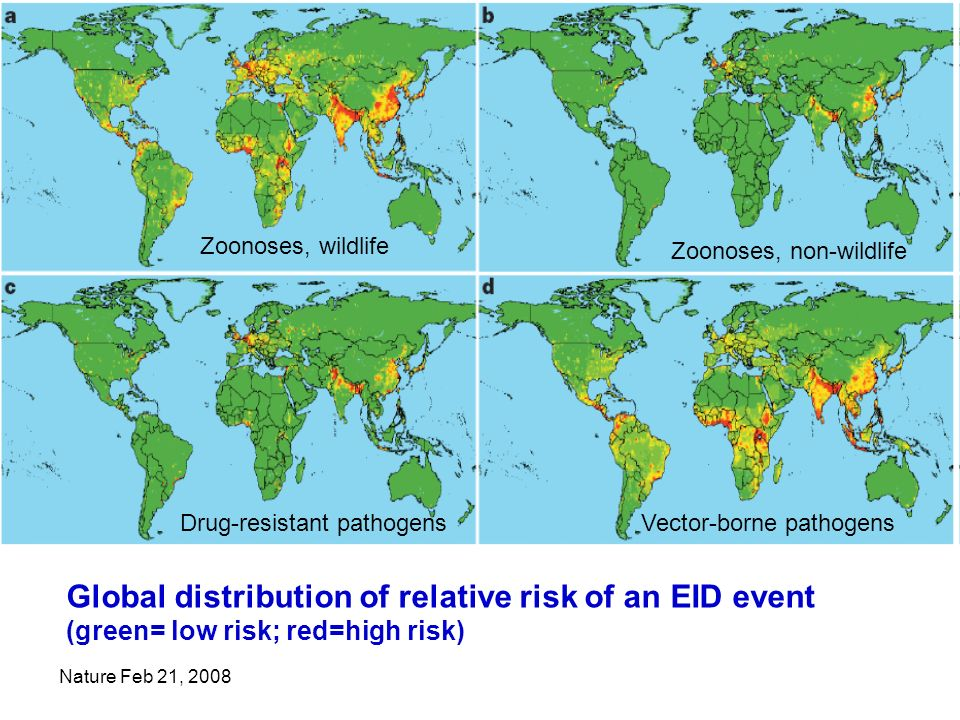 Nature Feb 21, 2008 Global distribution of relative risk of an EID event (green= low risk; red=high risk) Zoonoses, wildlife Zoonoses, non-wildlife Drug-resistant pathogensVector-borne pathogens