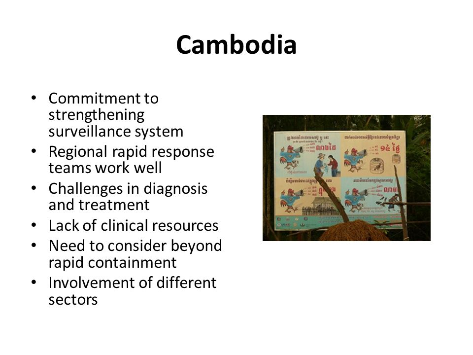 Cambodia Commitment to strengthening surveillance system Regional rapid response teams work well Challenges in diagnosis and treatment Lack of clinical resources Need to consider beyond rapid containment Involvement of different sectors