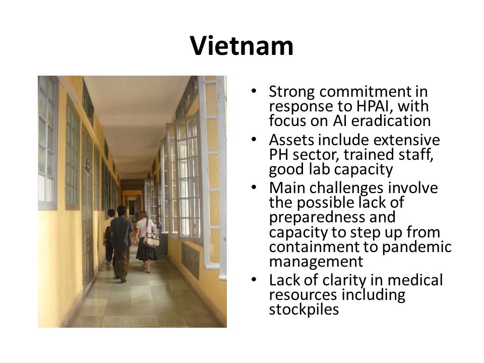 Vietnam Strong commitment in response to HPAI, with focus on AI eradication Assets include extensive PH sector, trained staff, good lab capacity Main challenges involve the possible lack of preparedness and capacity to step up from containment to pandemic management Lack of clarity in medical resources including stockpiles