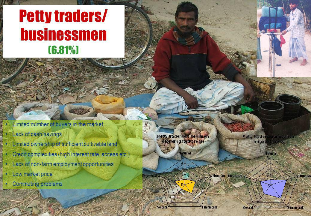 Petty traders/ businessmen (6.81%) Limited number of buyers in the market Lack of cash/savings Limited ownership of sufficient cultivable land Credit complexities (high interest rate, access etc.) Lack of non-farm employment opportunities Low market price Commuting problems