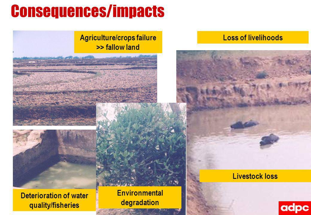 Consequences/impacts Agriculture/crops failure >> fallow land Livestock loss Deterioration of water quality/fisheries Environmental degradation Loss o