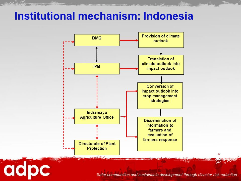 Institutional mechanism: Indonesia Directorate of Plant Protection IPB Provision of climate outlook BMG Translation of climate outlook into impact outlook Indramayu Agriculture Office Conversion of impact outlook into crop management strategies Dissemination of information to farmers and evaluation of farmers response