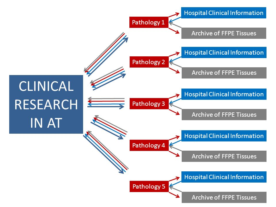 Pathology 1 Hospital Clinical Information Archive of FFPE Tissues Pathology 2 Hospital Clinical Information Archive of FFPE Tissues Pathology 3 Hospital Clinical Information Archive of FFPE Tissues Pathology 4 Hospital Clinical Information Archive of FFPE Tissues Pathology 5 Hospital Clinical Information Archive of FFPE Tissues CLINICAL RESEARCH IN AT