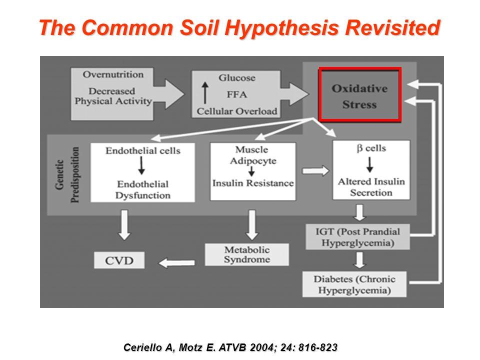 Ceriello A, Motz E. ATVB 2004; 24: 816-823 The Common Soil Hypothesis Revisited