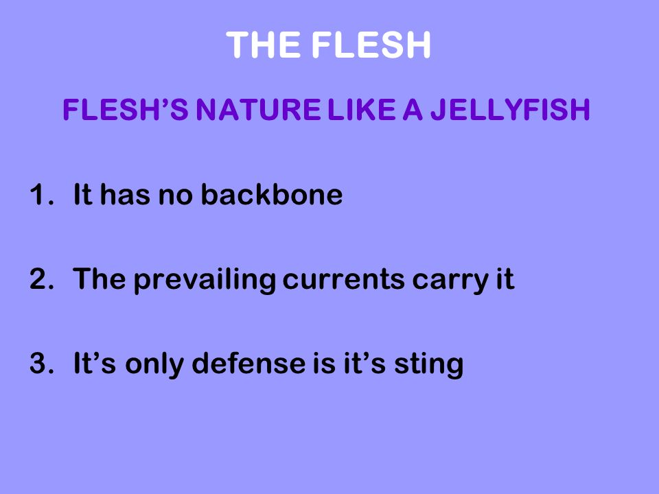 THE FLESH FLESHS NATURE LIKE A JELLYFISH 1.It has no backbone 2.The prevailing currents carry it 3.Its only defense is its sting