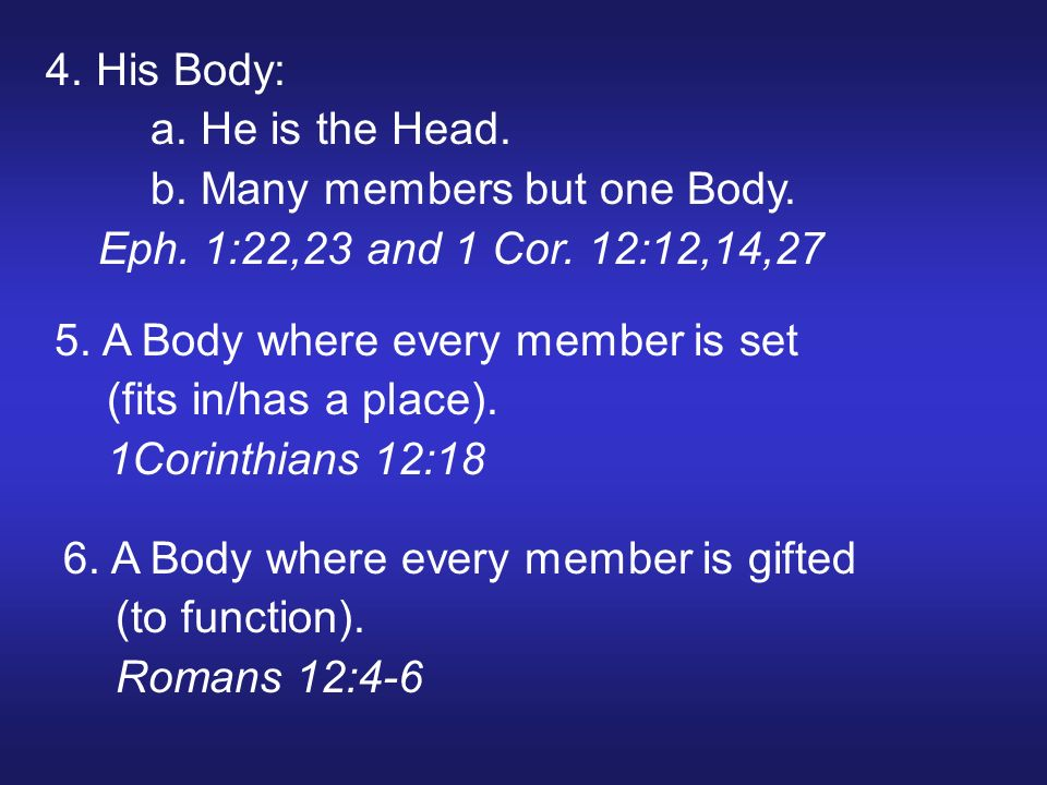 4. His Body: a. He is the Head. b. Many members but one Body. Eph. 1:22,23 and 1 Cor. 12:12,14,27 5. A Body where every member is set (fits in/has a p