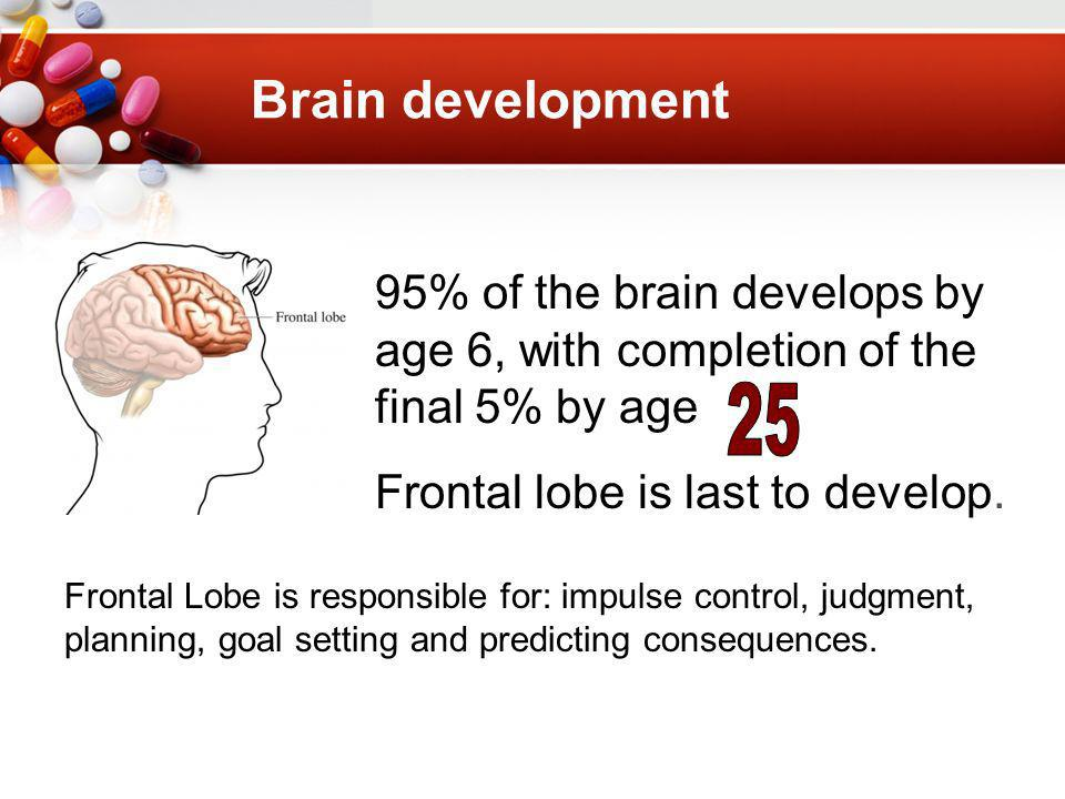 Brain development 95% of the brain develops by age 6, with completion of the final 5% by age Frontal lobe is last to develop.