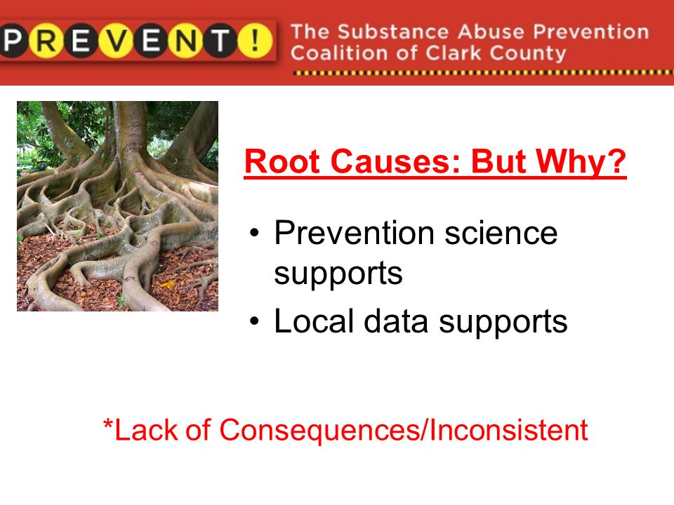 Root Causes: But Why.