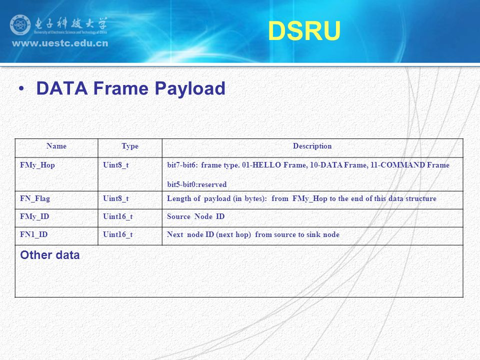 DSRU DATA Frame Payload NameTypeDescription FMy_HopUint8_tbit7-bit6: frame type.