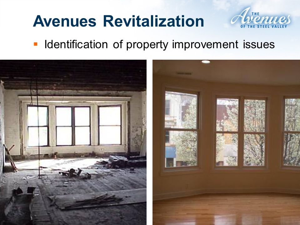 Avenues Revitalization Identification of property improvement issues