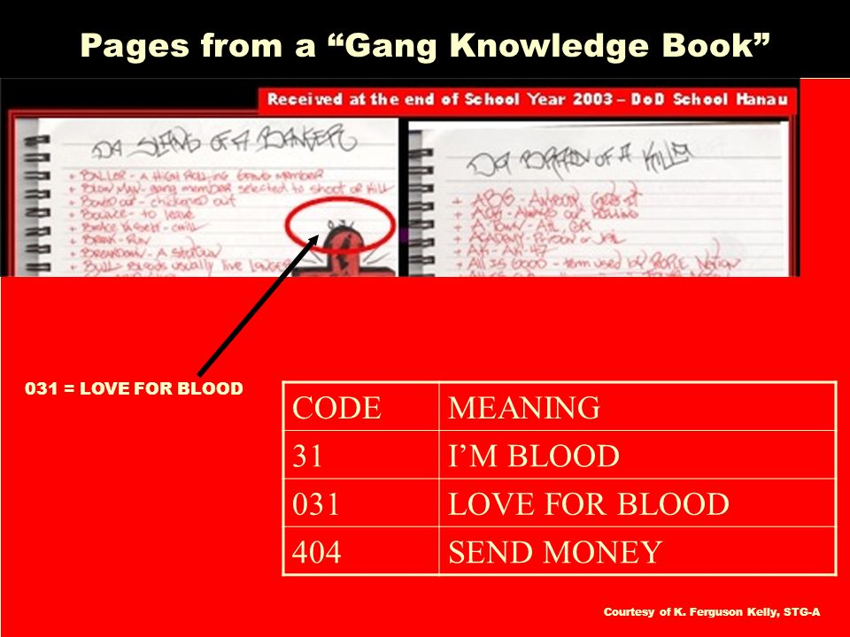 Source: Kenneth Ferguson Kelly, MHR Pages from a Gang Knowledge Book 031 = LOVE FOR BLOOD CODEMEANING 31IM BLOOD 031LOVE FOR BLOOD 404SEND MONEY Court