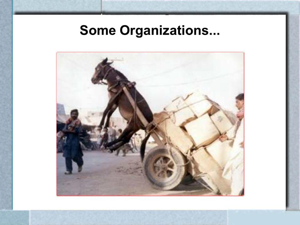 Some Organizations...