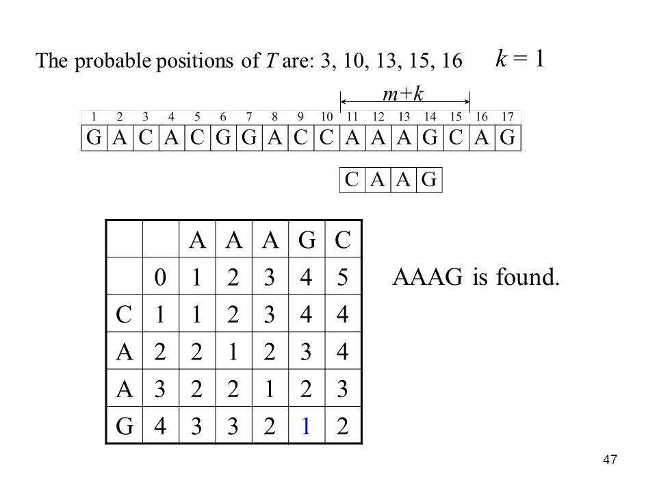 47 m+k AAAGC 012345 C112344 A221234 A322123 G433212 The probable positions of T are: 3, 10, 13, 15, 16 k = 1 AAAG is found.