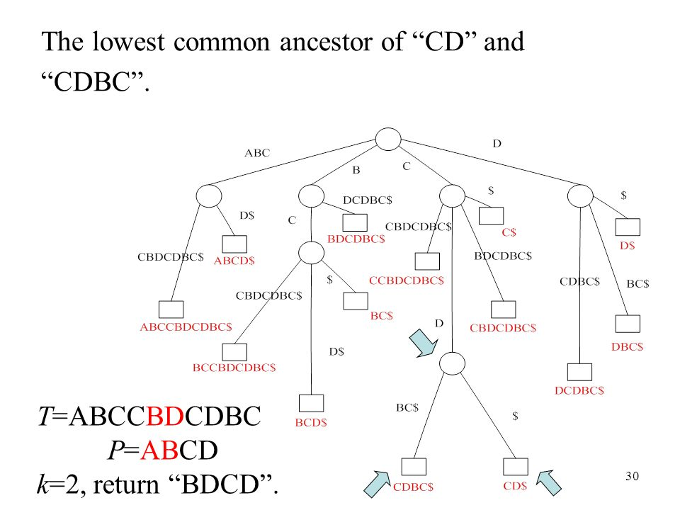 30 The lowest common ancestor of CD and CDBC. T=ABCCBDCDBC P=ABCD k=2, return BDCD.