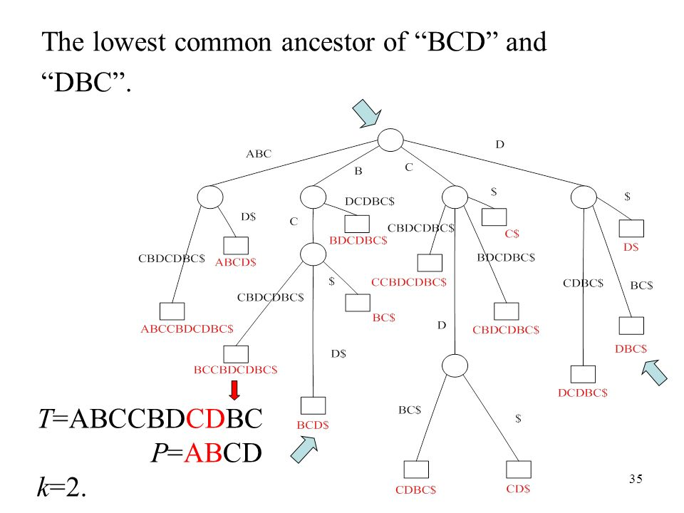 35 The lowest common ancestor of BCD and DBC. T=ABCCBDCDBC P=ABCD k=2.