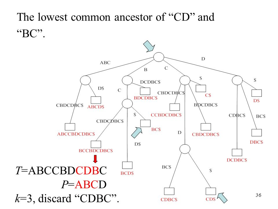 36 The lowest common ancestor of CD and BC. T=ABCCBDCDBC P=ABCD k=3, discard CDBC.