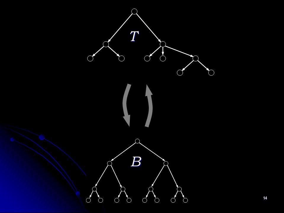 14 T B