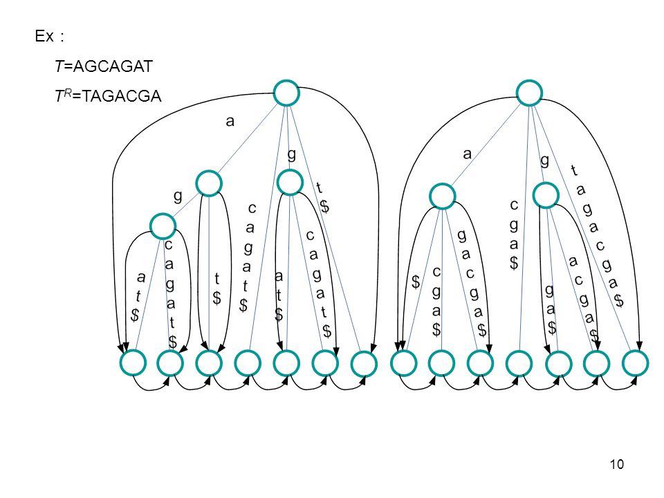 10 Ex T=AGCAGAT T R =TAGACGA
