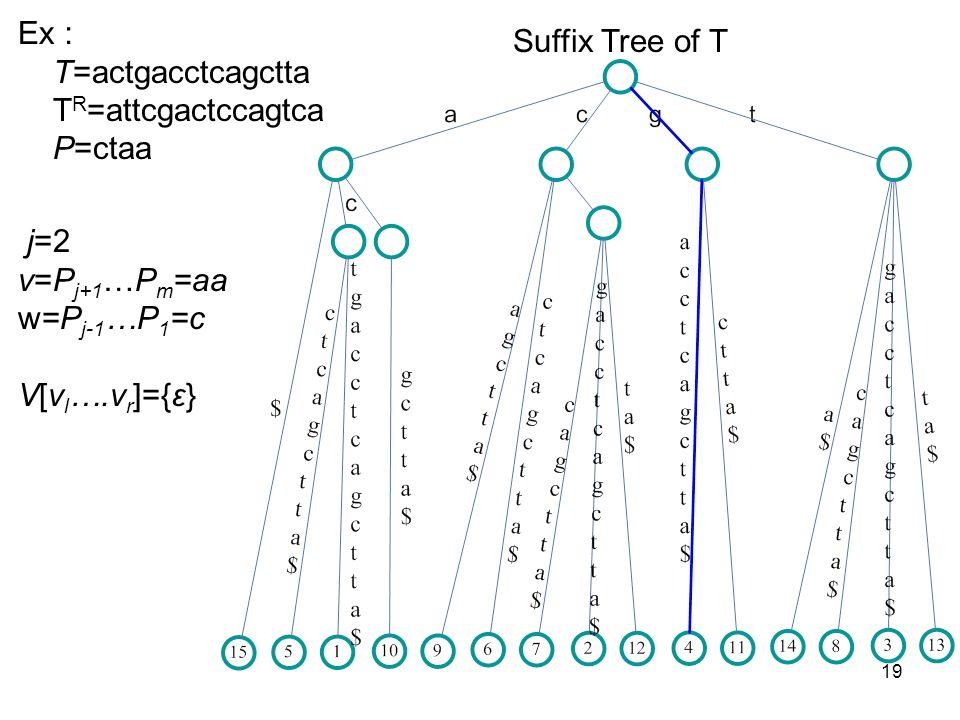 19 Suffix Tree of T Ex T=actgacctcagctta T R =attcgactccagtca P=ctaa j=2 v=P j+1 …P m =aa w=P j-1 …P 1 =c V[v l ….v r ]={ε}