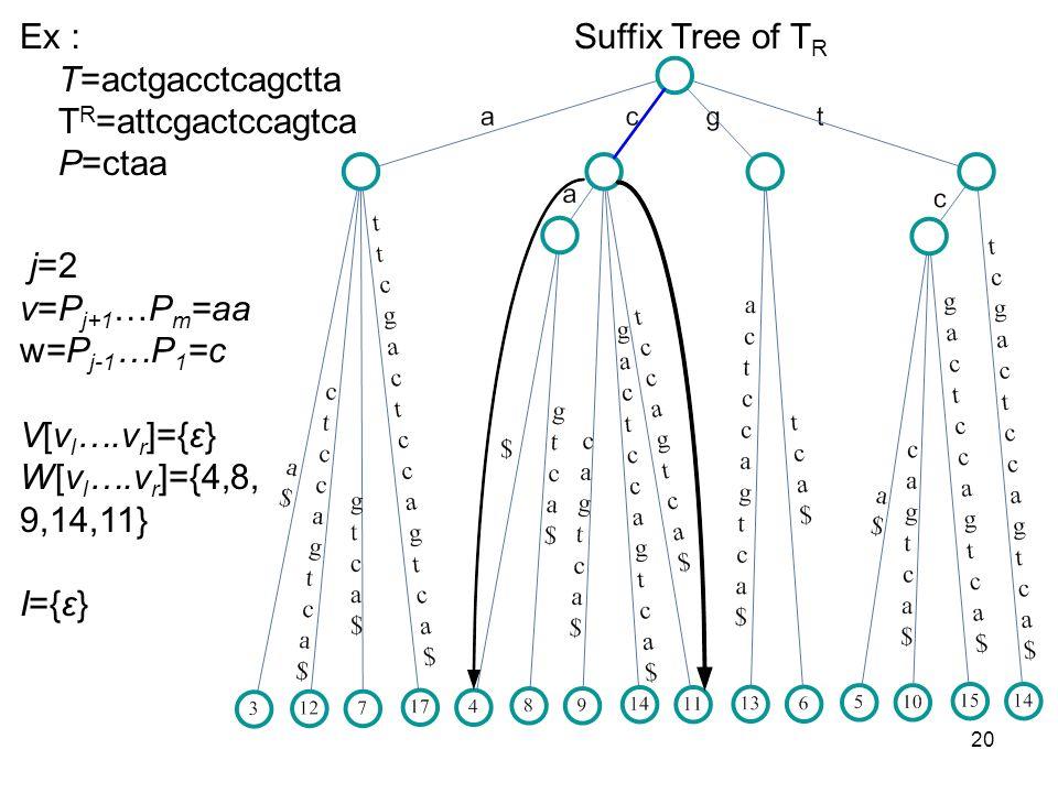 20 Suffix Tree of T R Ex T=actgacctcagctta T R =attcgactccagtca P=ctaa j=2 v=P j+1 …P m =aa w=P j-1 …P 1 =c V[v l ….v r ]={ε} W[v l ….v r ]={4,8, 9,14