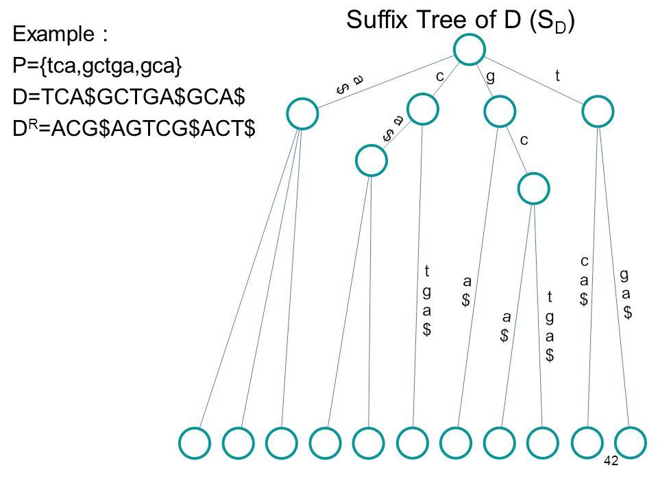 42 Example P={tca,gctga,gca} D=TCA$GCTGA$GCA$ D R =ACG$AGTCG$ACT$ Suffix Tree of D (S D )