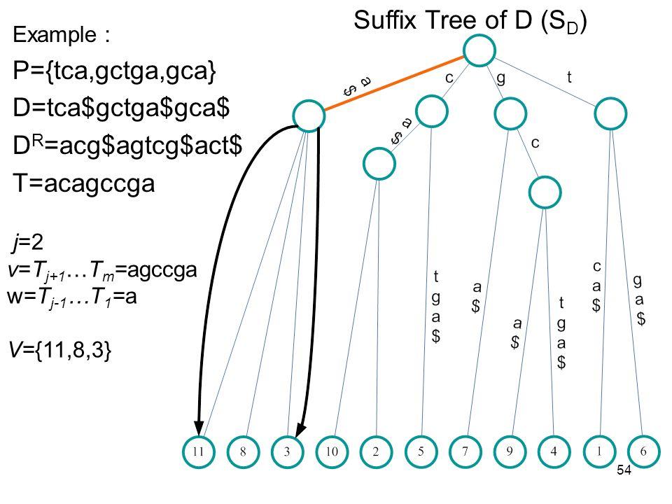 54 Suffix Tree of D (S D ) Example P={tca,gctga,gca} D=tca$gctga$gca$ D R =acg$agtcg$act$ T=acagccga j=2 v=T j+1 …T m =agccga w=T j-1 …T 1 =a V={11,8,