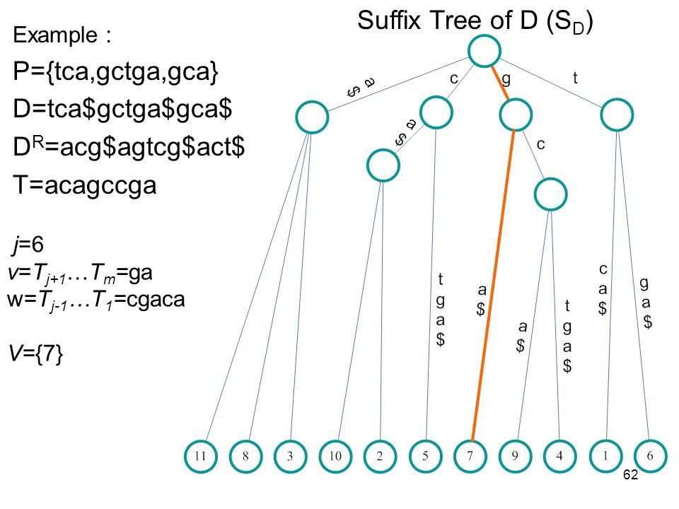 62 Suffix Tree of D (S D ) Example P={tca,gctga,gca} D=tca$gctga$gca$ D R =acg$agtcg$act$ T=acagccga j=6 v=T j+1 …T m =ga w=T j-1 …T 1 =cgaca V={7}