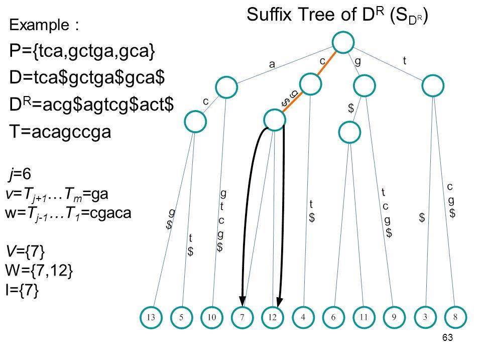 63 Suffix Tree of D R (S D R ) Example P={tca,gctga,gca} D=tca$gctga$gca$ D R =acg$agtcg$act$ T=acagccga j=6 v=T j+1 …T m =ga w=T j-1 …T 1 =cgaca V={7