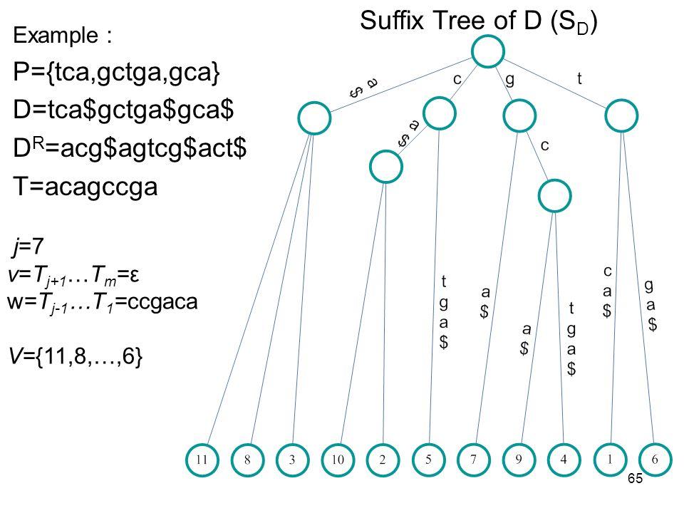 65 Suffix Tree of D (S D ) Example P={tca,gctga,gca} D=tca$gctga$gca$ D R =acg$agtcg$act$ T=acagccga j=7 v=T j+1 …T m =ε w=T j-1 …T 1 =ccgaca V={11,8,
