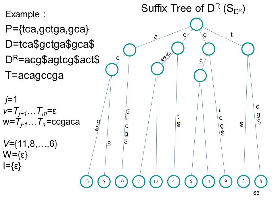 66 Suffix Tree of D R (S D R ) Example P={tca,gctga,gca} D=tca$gctga$gca$ D R =acg$agtcg$act$ T=acagccga j=1 v=T j+1 …T m =ε w=T j-1 …T 1 =ccgaca V={1