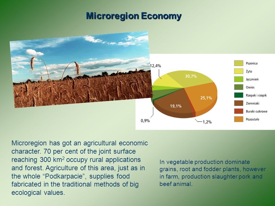 Microregion Economy Microregion has got an agricultural economic character.