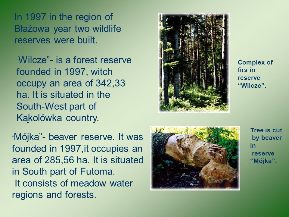 In 1997 in the region of Błażowa year two wildlife reserves were built.