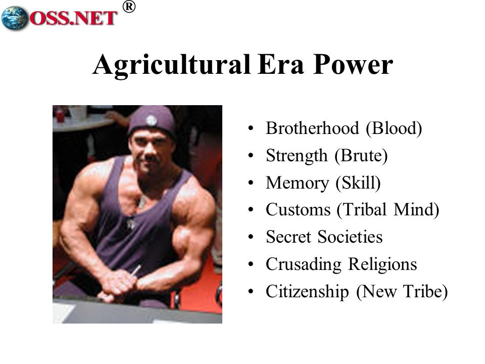 ® Agricultural Era Power Brotherhood (Blood) Strength (Brute) Memory (Skill) Customs (Tribal Mind) Secret Societies Crusading Religions Citizenship (New Tribe)