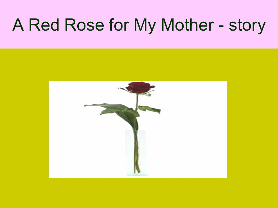 A Red Rose for My Mother - story