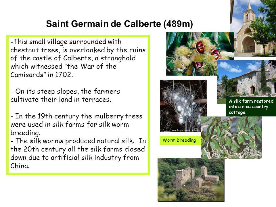 Saint Germain de Calberte (489m) -This small village surrounded with chestnut trees, is overlooked by the ruins of the castle of Calberte, a stronghold which witnessed the War of the Camisards in 1702.