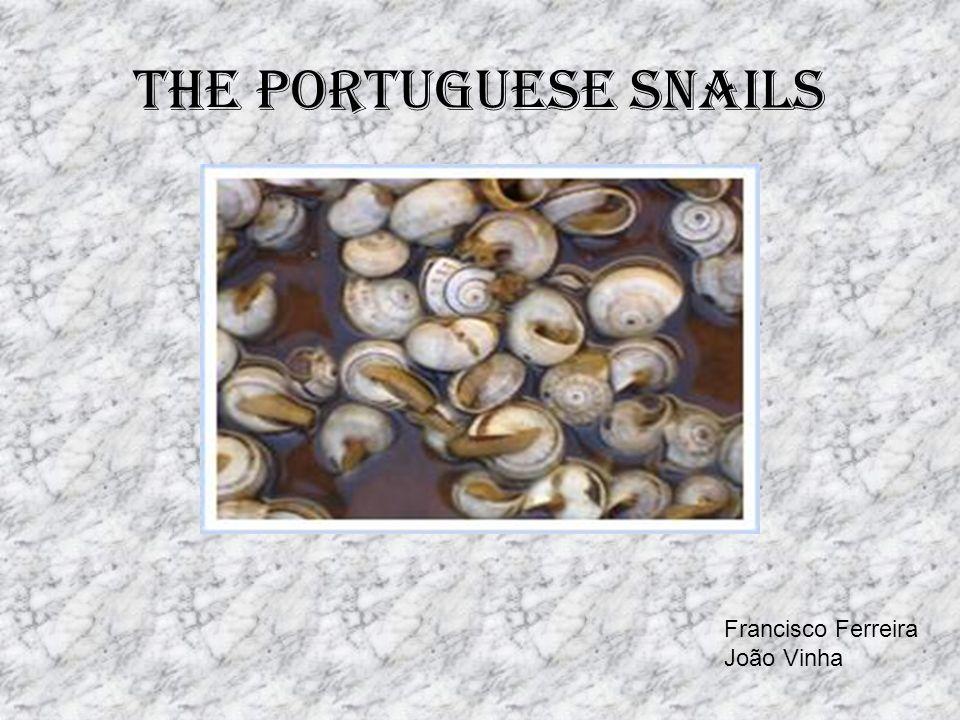 The Portuguese Snails Francisco Ferreira João Vinha