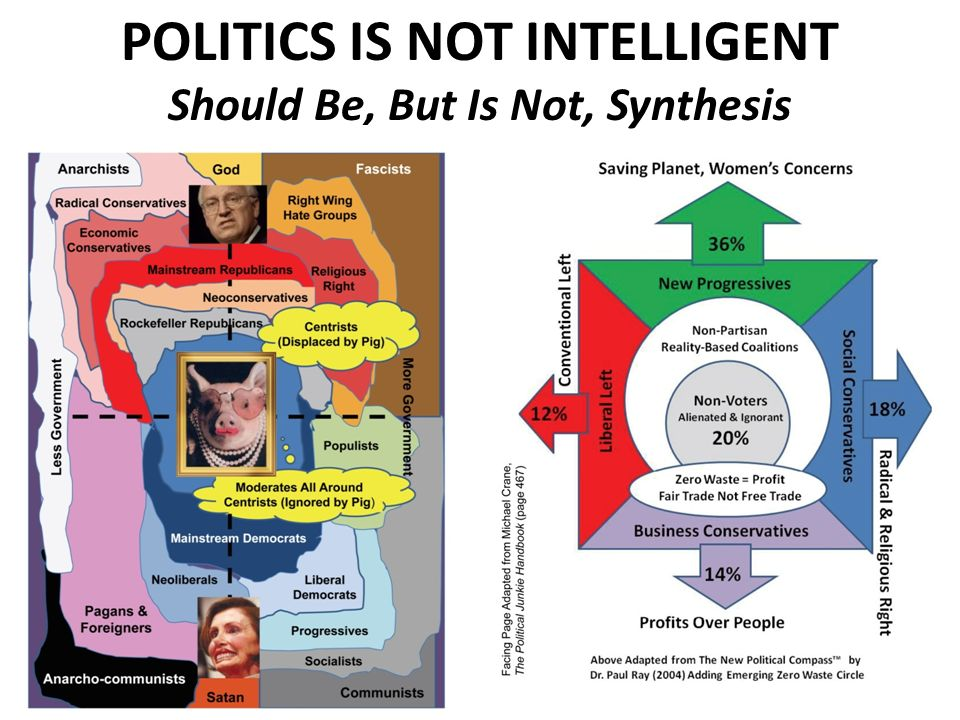 POLITICS IS NOT INTELLIGENT Should Be, But Is Not, Synthesis