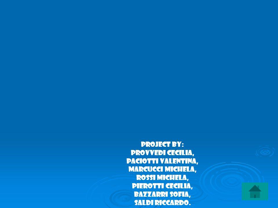 Project by: Provvedi Cecilia, Paciotti Valentina, Marcucci Michela, Rossi Michela, Pierotti Cecilia, Bazzarri Sofia, Saldi Riccardo.