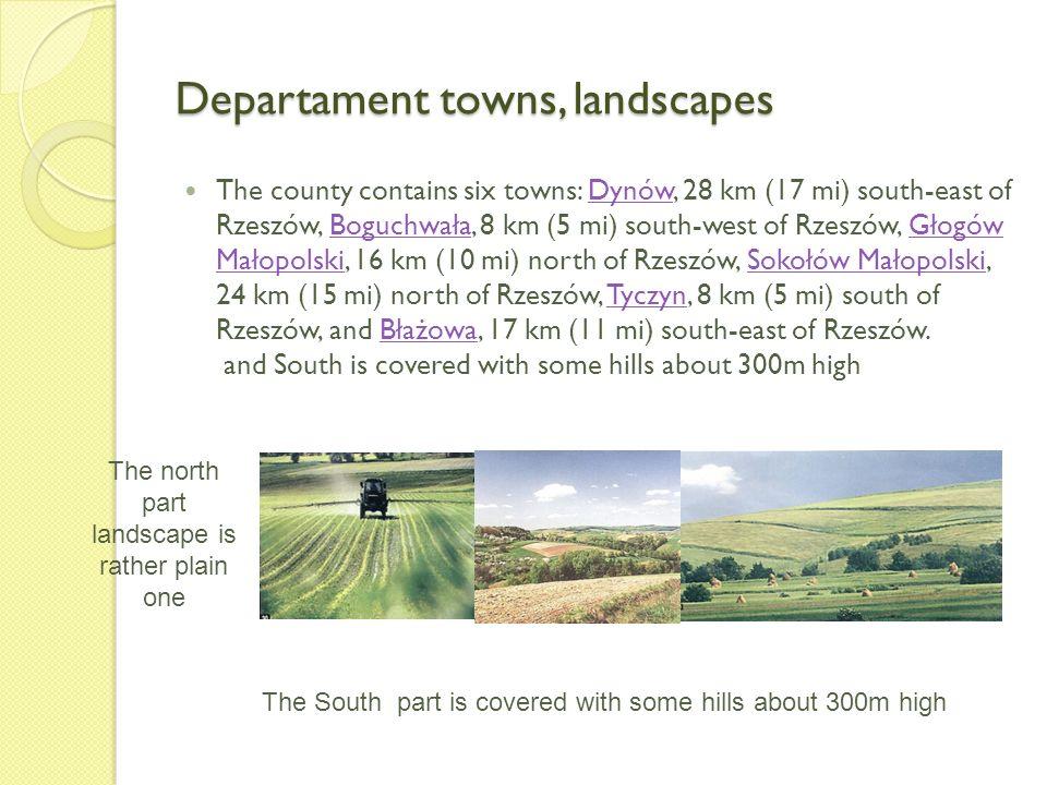 Departament towns, landscapes The county contains six towns: Dynów, 28 km (17 mi) south-east of Rzeszów, Boguchwała, 8 km (5 mi) south-west of Rzeszów, Głogów Małopolski, 16 km (10 mi) north of Rzeszów, Sokołów Małopolski, 24 km (15 mi) north of Rzeszów, Tyczyn, 8 km (5 mi) south of Rzeszów, and Błażowa, 17 km (11 mi) south-east of Rzeszów.