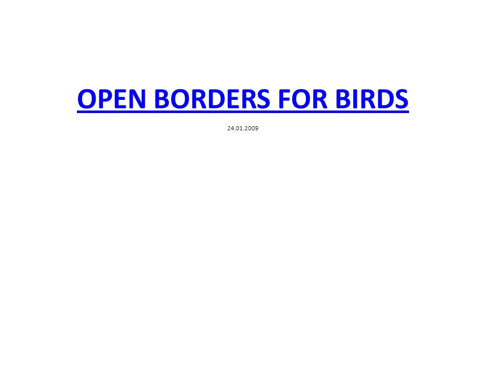 OPEN BORDERS FOR BIRDS OPEN BORDERS FOR BIRDS 24.01.2009