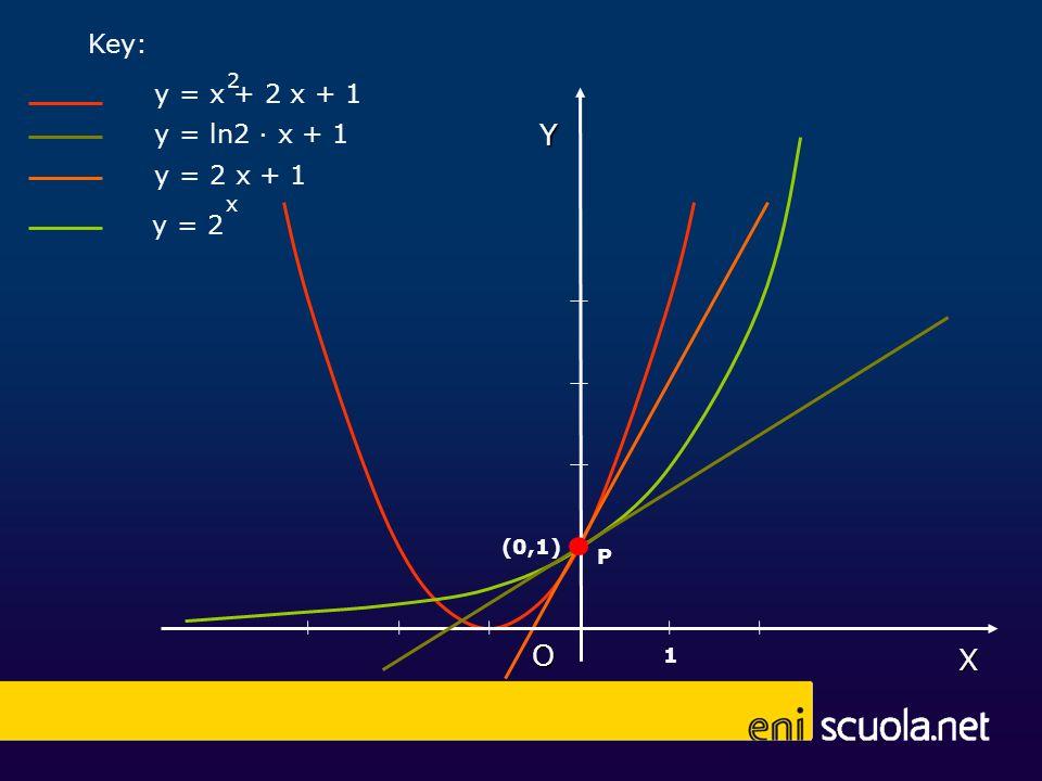 X Y O (0,1) 1 y = 2 x y = x + 2 x + 1 2 Key: y = 2 x + 1 y = ln2 x + 1 P