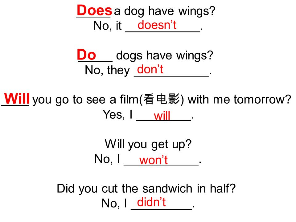 _____ a dog have wings. No, it ___________. _____ dogs have wings.