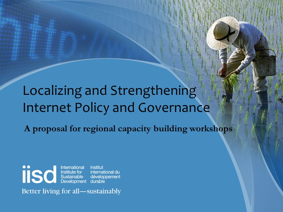 Localizing and Strengthening Internet Policy and Governance A proposal for regional capacity building workshops