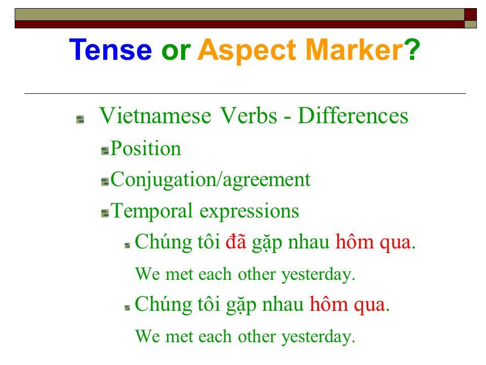 Vietnamese Verbs - Differences Position Conjugation/agreement Temporal expressions Chúng tôi đã gp nhau hôm qua. We met each other yesterday. Chúng tô