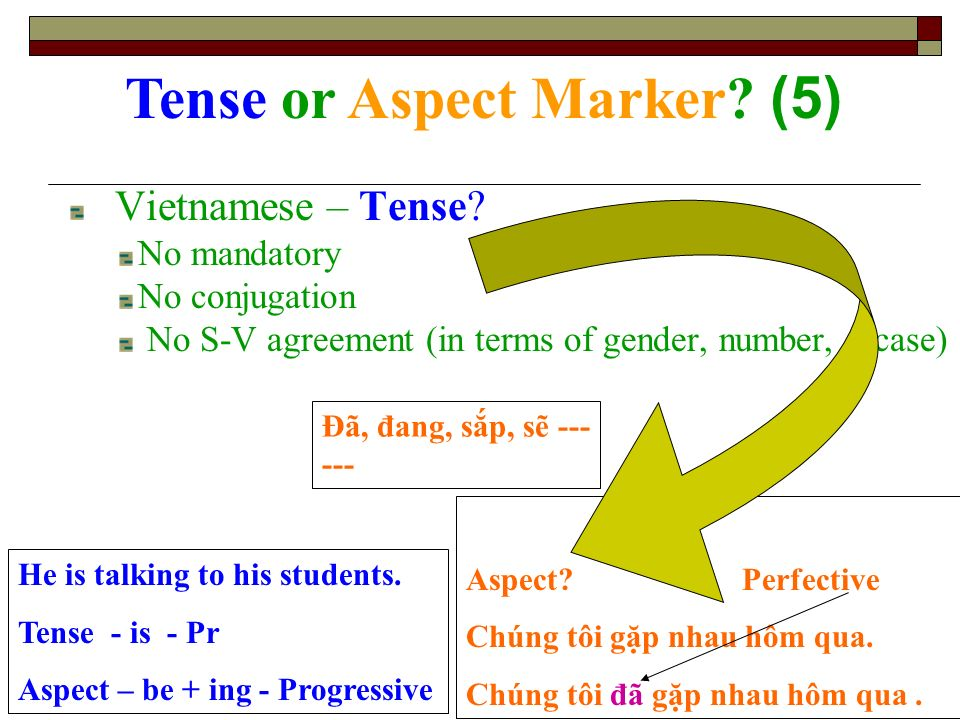 Vietnamese – Tense? No mandatory No conjugation No S-V agreement (in terms of gender, number, case) Tense or Aspect Marker? (5) He is talking to his s